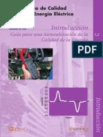 Guia Calidad 1-2 Autovaloracion.pdf