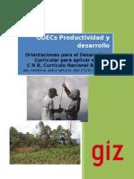 1 08 ODECS Productividad Desarrollo I 2013