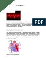 Texto_Mes_do_Coracao_1_2.pdf