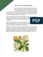 EL-MANGO-Y-SUS-COMPONENTES.docx
