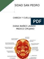 cabezaycuello-131209095711-phpapp01