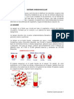 Resumen Sistema Cardiovascular