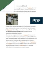 DEFINICIÓN DE PRAXIS.docx