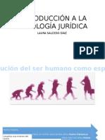 Evolucion Social Del Ser Humano.