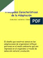 4. Principales características de la adaptación.ppt