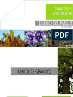 Catalogo Vegetación en México