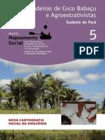 05 Quebradeiras Coco Babacu Agroextrativistas Para