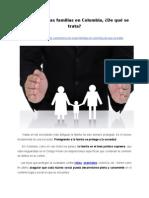 Protección a las familias en Colombia, ¿De qué se trata?