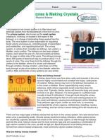 04b Kidney Stones & Making Crystals - Student Sheet