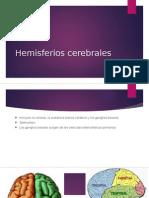 Hemisferios-cerebrales (1)