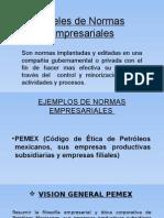 NIVELES DE NORMAS EMPRESARIALES