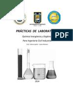 Practicas de Química Inorgánica y Orgánica(OTRO)-2