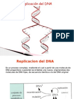 Replicacion -Reparacion DNA
