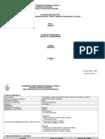 Perfil_de La Ingenieria PROGRAMA[1]