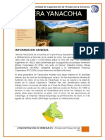 informe minera yanacocha