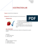 dnaextractionlab