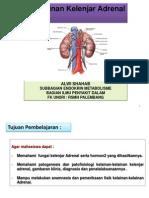 IT 12 - Kelainan Kelenjar Adrenal - ALW
