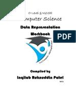 1.1 Data Representation Workbook by Inqilab Patel