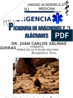 Aracnidosurgencias 150213225249 Conversion Gate02