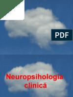 Яяяя Neuropsihol Prelegere 05.10.12
