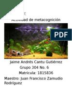 Actividad de Metacognicion Biologia Etapa 2