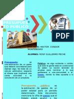 PRESUPUESTO PÚBLICO.pptx
