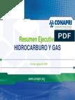 Resumen Ejecutivo Hidrocarburosygas2008 - Conapri