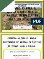 3. Estrategias Para El Control y Manejo de Malezas. Ing. Agr. Víctor Juan