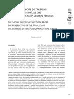 A EXPERIÊNCIA SOCIAL DO TRABALHO SOB A ÓTICA DAS FAMÍLIAS DOS AGRICULTORES DA SELVA CENTRAL PERUANA