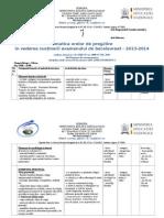 Tematica Pregatire Bac2013-2014