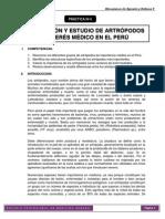 PRÁCTICA 6. Mecanismos de Agresión y Defensa II - 2015 - II