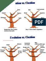 Evolution vs. Creation