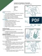 Programul de reanimare neonatologie