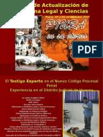 01.-El Testigo Experto en El NCPP Peri MARCIAL ALVARADO