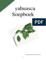Ayahuasca Soepboek