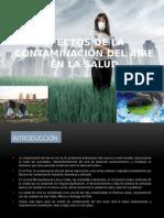 Efectos de La Contaminación Del Aire en La (1)