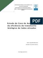 Estudo de Caso de Avaliação da Eficiência do Tratamento Biológico de Lodos Ativados
