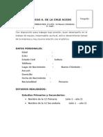 CV - Formato