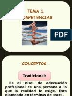 28547_25576_Competencias_.ppsx