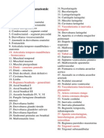 Subiecte Examen Anatomie an I Sem II