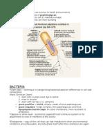 Prokarya (Bacteria & Archaea)