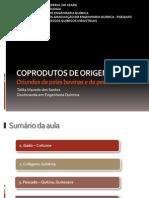 aula_origem_animal.pdf