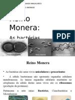 Aula 2 (Bactérias)