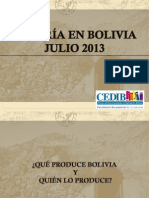 Mineria Bolivia CEDIB2013