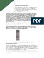 parametros de diseño