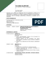 Modelo de CV Becarios Egresados Pronabec 02.2015 2