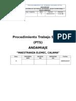 PTS Andamiaje