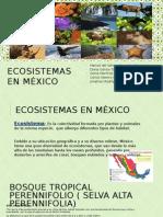ECOSISTEMAS EN MÉXICO.pptx