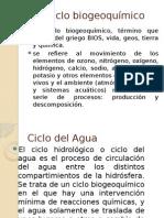 2.3 Ciclos Biogeoquimicos