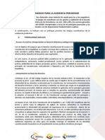 2-2-GUIA-AUDIENCIA PRELIMINAR (1)
